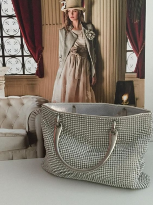 Elegante Abendtasche in Silberilber
